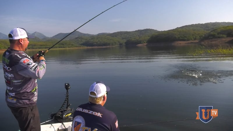 Swimbaits Bass Fishing Videos