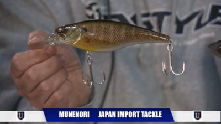 Finesse Bass Fishing Videos
